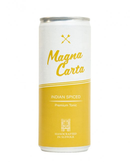 Magna Carta - Indian Spiced Tonic